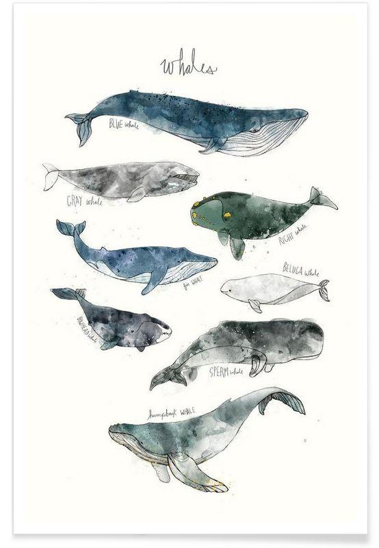 https://www.juniqe.de/whales-premium-poster-portrait-1124454.html