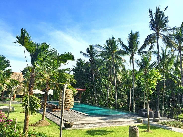Trip to Bali, Nature pool view at The Artini Resort Ubud