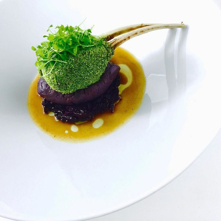 The green rack a part of @froot_tree_restaurant opening menu parsley crusted lamb rack with a caramelised red onion and red cabbage mash /with red cabbage slaw @chefjasonhoward #GourmetArtistry #feedfeed #recipeoftheday #picoftheday #photooftheday #gastronogram #gastroart #foodandwine #foodwinewomen #eeeeeats #food52 #f52grams #foodporn #foodstagram #foodstyling #instapic #instafood #instalike #igtoronto #igerstoronto #caribbeanculinarycollective #topcaribbeanchef #gastroart #chefstalk…