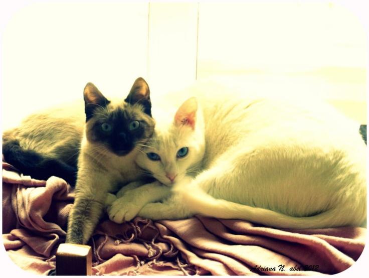 Matilde y Julieta