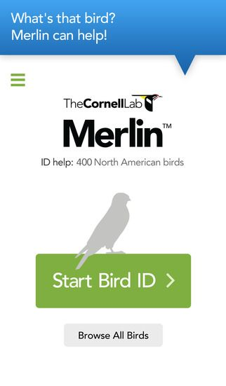 """Merlin Bird ID by Cornell Lab of Ornithology by Cornell University: """"What's that bird? Merlin Bird ID helps you solve the mystery. First, Merlin asks you a few simple questions. Then, almost like magic, it reveals the list of birds that best match your description. Pick your bird, then delve into more photos, sounds, and ID tips about your bird!"""""""