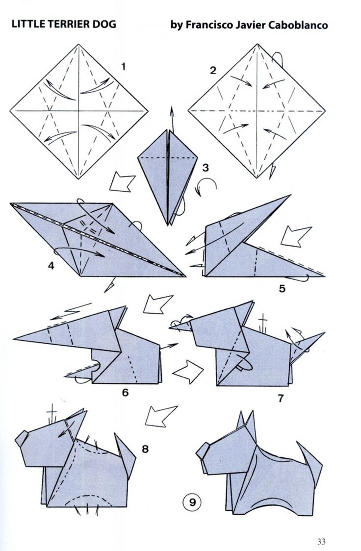 Origami Pitbull Diagram - Online Schematic Diagram •