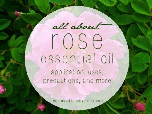 Learn how to use rose essential oil for emotional balance, skin health, and more, via SustainableBabySteps.com