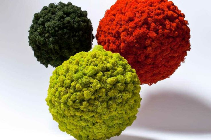 Moss Sphere, different colors - Floemasrl.it