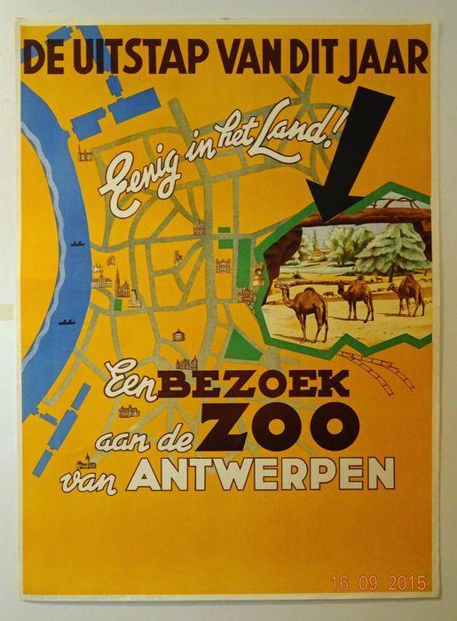René Van Poppel - 'De uitstap van dit jaar - Een bezoek aan de Zoo van Antwerpen' - 1948  Offsetlithografie daterend uit 1948Ontwerp: René van Poppel ( zoals vermeld onderaan links in de rand)Afmetingen: 84 cm hoog x 61 cm breedDruk: Reclamestudio Van PoppelConditie A :perfecte staatVerzending: opgerold in stevige koker met track & trace of aangetekendLithograaf/affichist René Van PoppelNaast de iconische omkijkende ijsbeer tegen een blauwe achtergrond tekende René Van Poppel voor nog enkele…