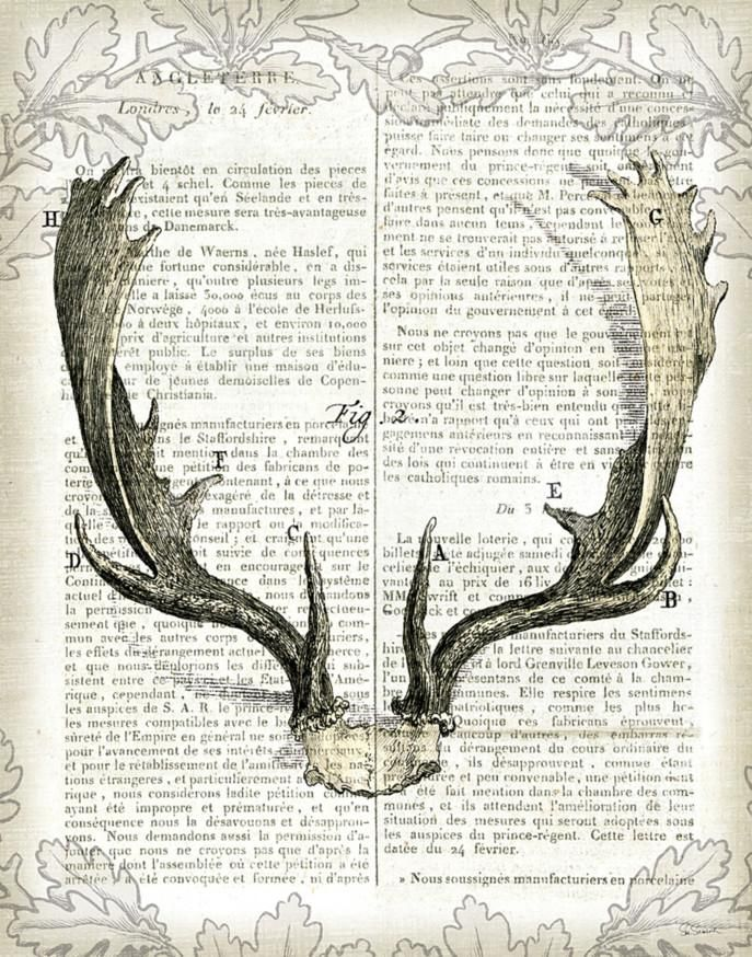 Regal Antlers on Newsprint II Art Print by Sue Schlabach at Art.com