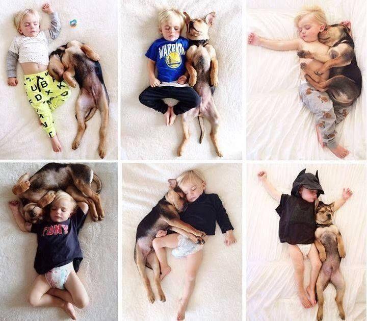 Best Friends http://www.siostraania.pl/artykul/ze-zwierzakiem-pod-jednym-dachem---rozmowa-z-lek-wet-milena-wojtys--gajda