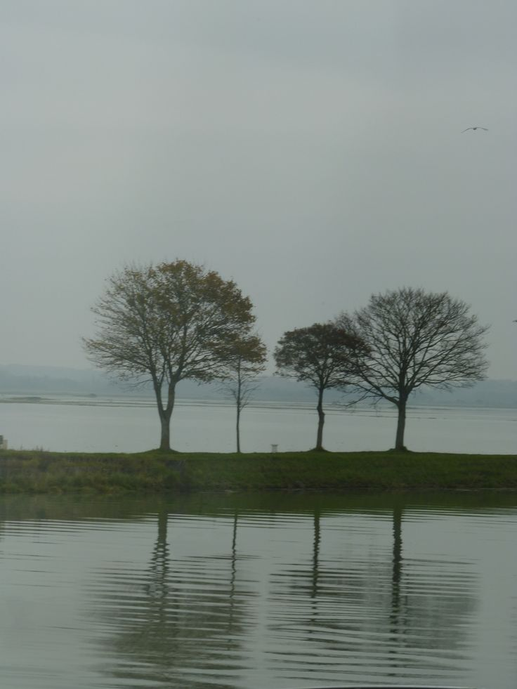 Baie de Somme 2 photo MAS