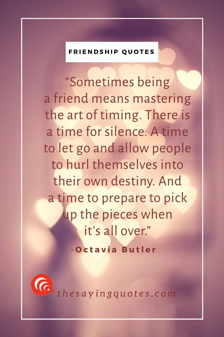 150 Best Friendship Quotes With Beautiful