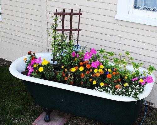 I Ve Always Wanted Bathtub With Flowers In It Garden Tub Backyard Vegetable Gardens Garden
