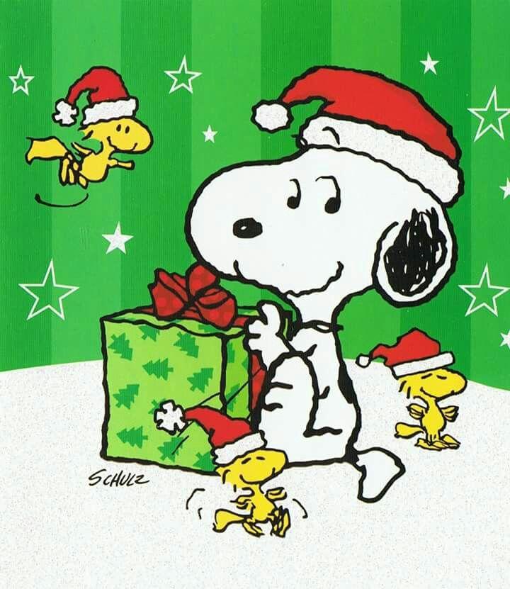 Die besten 25 charlie brown zitate ideen auf pinterest zitate erdn sse frohe weihnachten - Charlie brown zitate ...