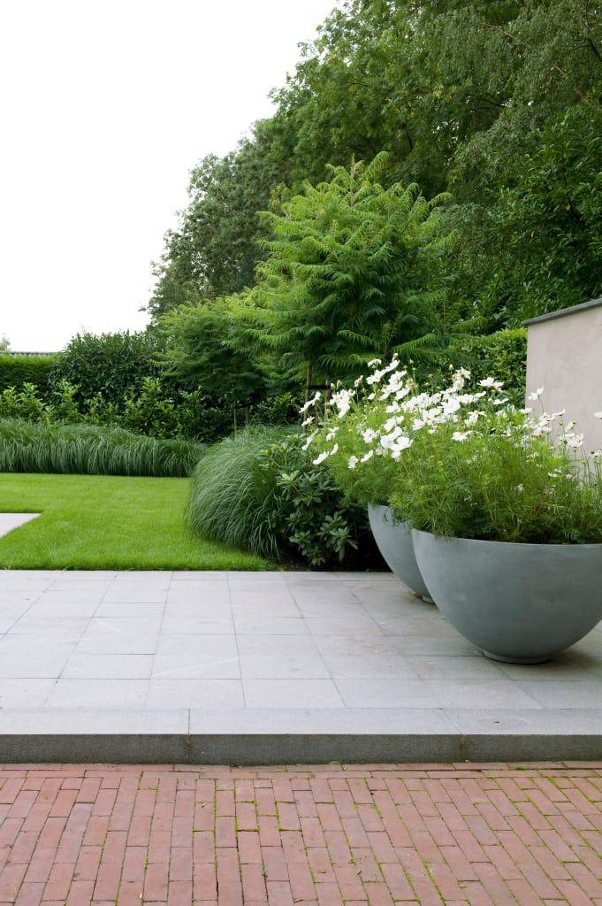 Vind afbeeldingen van moderne Tuin: Luxe tuin met zwembad. Ontdek de mooiste foto's & inspiratie en creëer uw droomhuis.