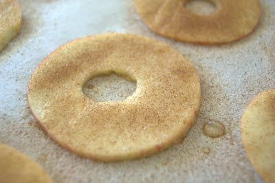 Day 165 - Baked Cinnamon Apple Slices - 365 Days of Baking