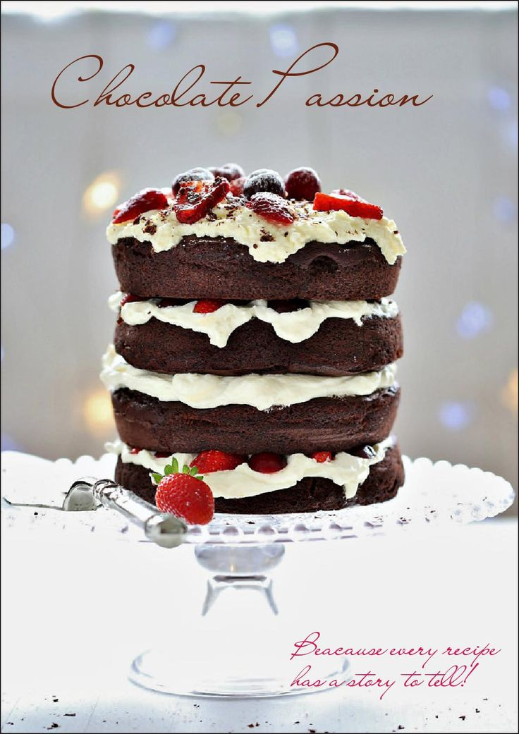 Cakes  Recipes for chocolate lovers