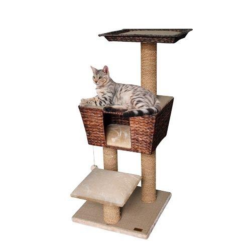 les 25 meilleures id es de la cat gorie griffoir sur pinterest. Black Bedroom Furniture Sets. Home Design Ideas