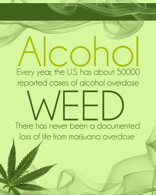 Alcohol vs Weed ( marijuana cannabis) marijuanaplant marijuanaphotos marijuana ganja pot bongs