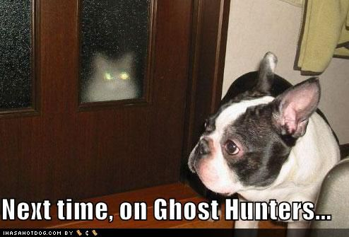 Funny Ghost Humor | Ghost Humor | The Lone Wolf