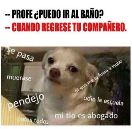 Imágenes de memes en español - http://www.fotosbonitaseincreibles.com/imagenes-memes-espanol-11/