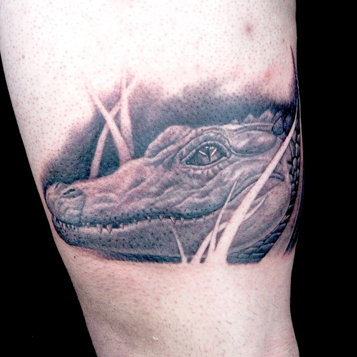 7 best animal tattoos ink master season 9 images on for Black anchor collective tattoo