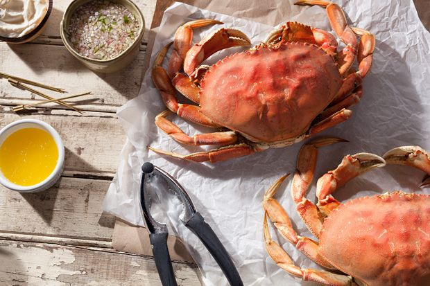 Basic Steamed Dungeness Crab. As much as I love Blue Crab, here in CA, Dungeoness Crab is local and abundant. Mmmm...