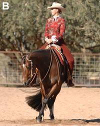 Freeze-Frame Western Horsemanship Lesson
