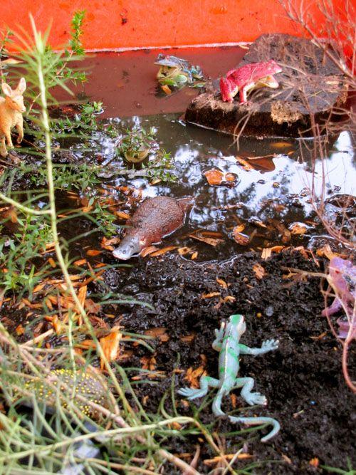 """Animals/minibeasts & mud... ("""",)"""