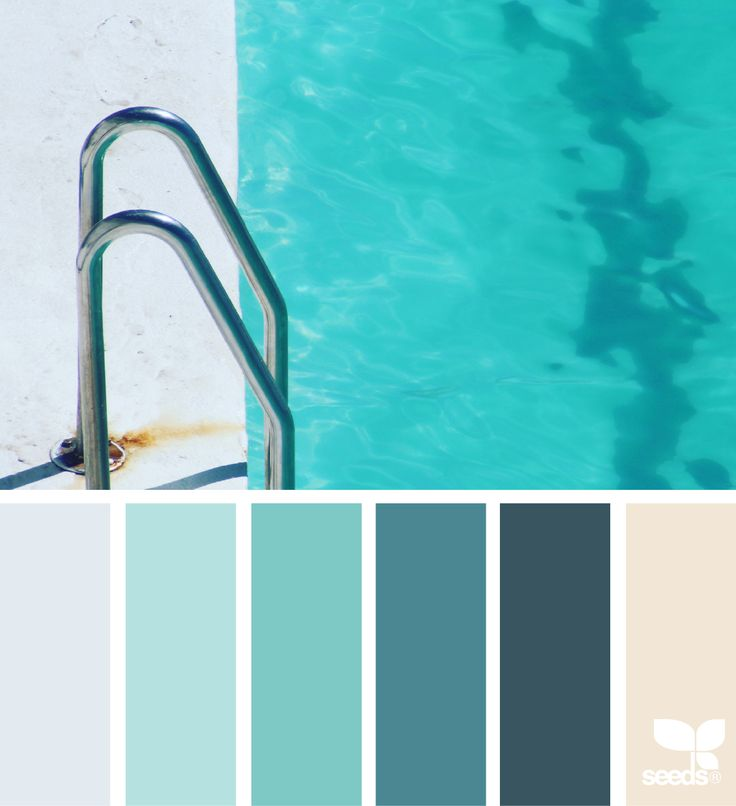 { color swim } image via: @thebungalow22