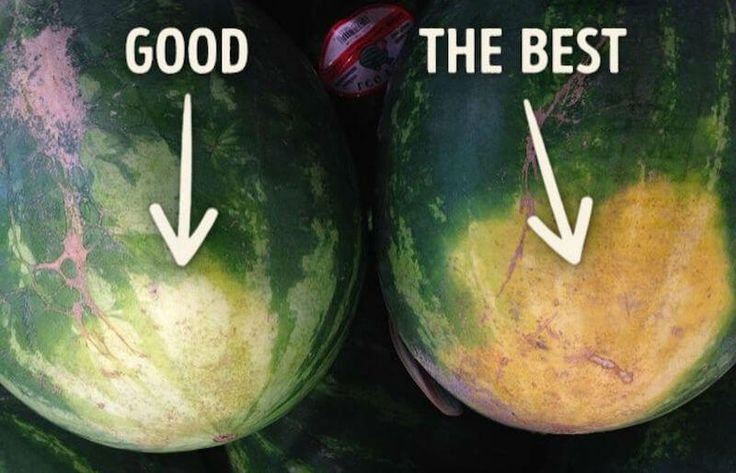 I constantly seem to find myself educating people on how to pick the perfect watermelon. When I'm at the grocery store, looking through the watermelon bins, I'm often encountered by numerous individuals asking what I'm looking for. In fact, picking the perfect watermelon isn't as hard as it may seem. It may take a little …
