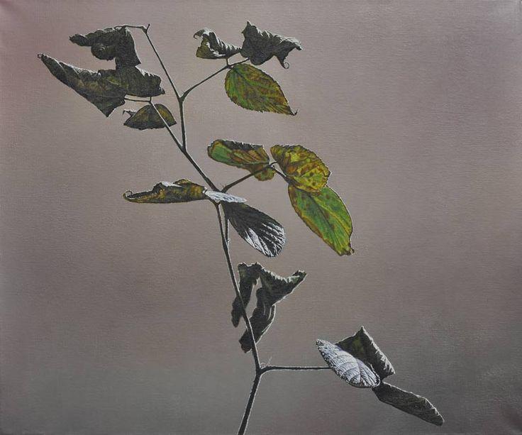 Christoph Eberle, Switzerland, hyper realism, painting, plant, blackberry, oil on canvas