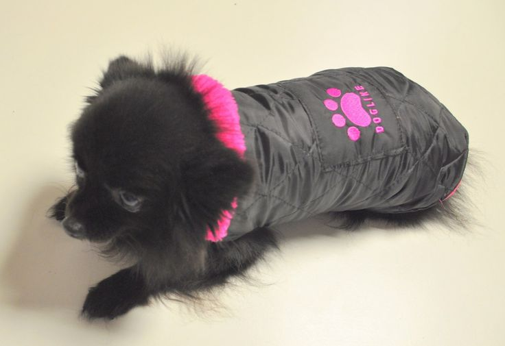 Doglike pink