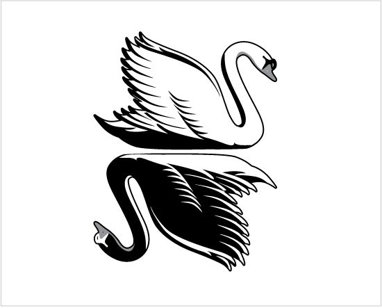 This might be something cool for my back since my Celtic animal is the swan.