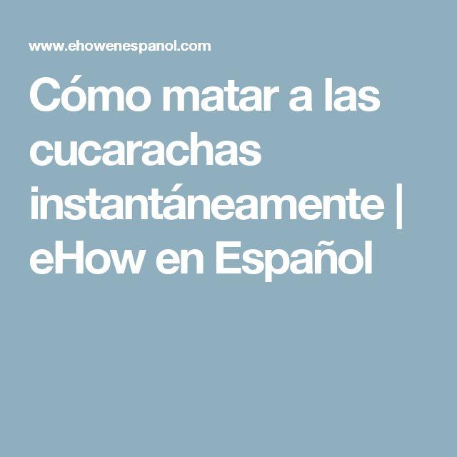 Cómo matar a las cucarachas instantáneamente | eHow en Español