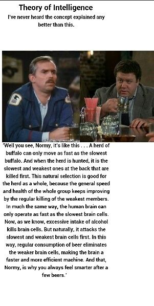 Cheers. Classic T.V. show.   I know someone who would spout this theory.