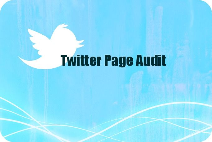 brandigood: do a Twitter business audit for $5, on fiverr.com