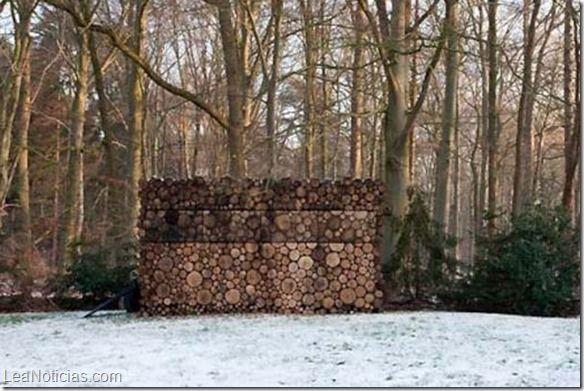 Parece una pila de troncos... Pero mira, acércate un poco... Sorprendente - http://www.leanoticias.com/2014/06/02/parece-una-pila-de-troncos-pero-mira-acercate-un-poco-sorprendente/