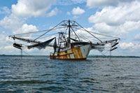 La industria pesquera mundial dependiente de los recursos estuarinos es uno de los sectores que se verá afectado por el cambio climático global.