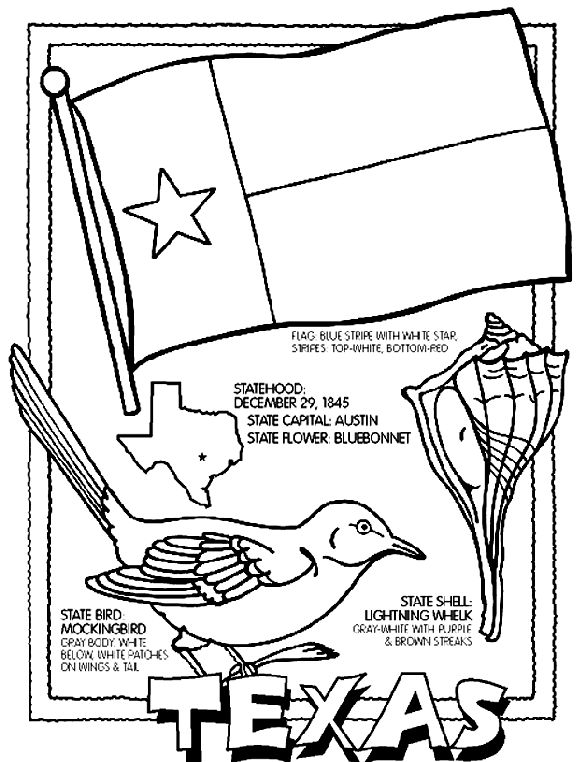 1000 images about texas symbols on pinterest cactus for Coloring pages for texas