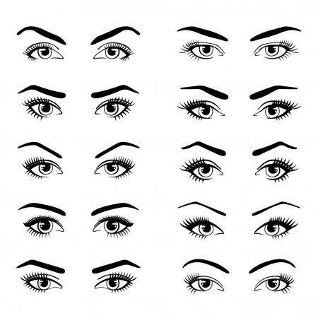 Conjunto de varios tipos de ojos femeninos . — Ilustración de stock en 2020    Tipos de ojos, Cejas masculinas, Femenina