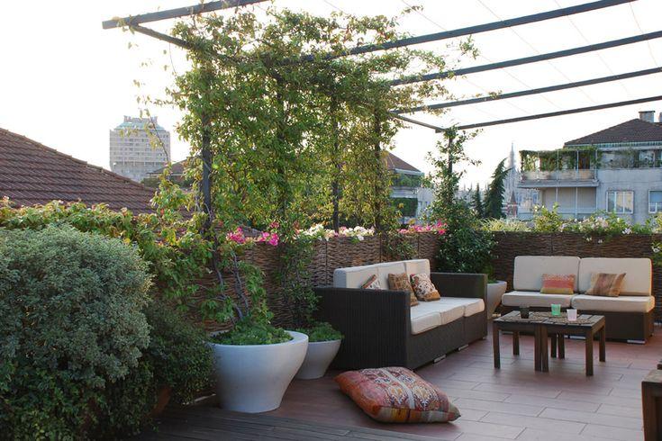8 best terrazzi balconi images on pinterest keep calm for Piante per terrazzi