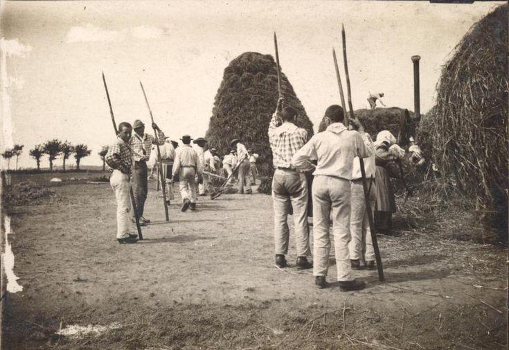 snapshot récolte de foin hommes femmes habits traditionnels paysans mode 1900