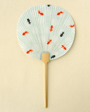 Uchiwa  夏団扇 水玉金魚