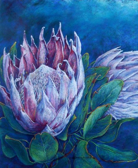 'Protea' (Pastel). Helen Miles