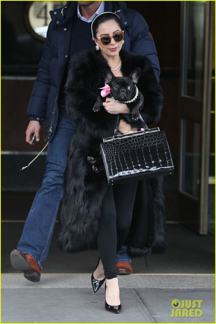 lady gaga taylor kinney leonardo dicaprio movie 01 Lady Gaga carries her adorable dog Asia while stepping out of her apartment on Monday (December 22) in New York City.    The 28-year-old entertainer recently opened…