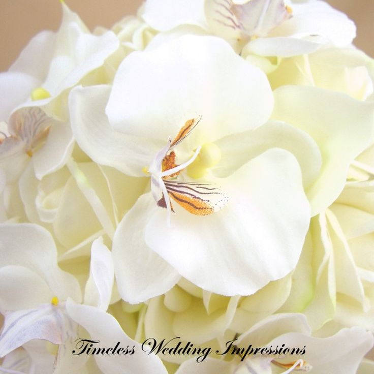 17 Best Images About Flowers Amp Bouquets On Pinterest Bridal Bouquets Rose Bouquet And White