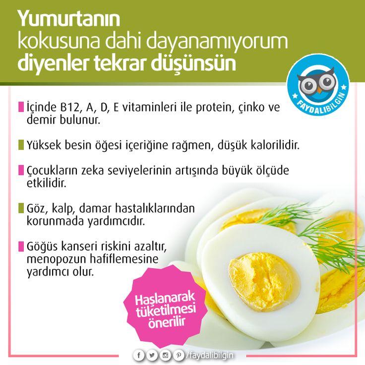 #sağlık #yumurta #beslenme