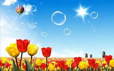 flower in blue sky