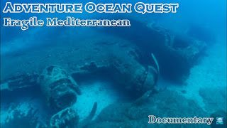 Underwater Videos by CVP: Adventure Ocean Quest - Fragile Mediterranean - Maritime Documentary