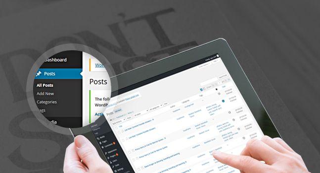 news maxx wordpress home post format