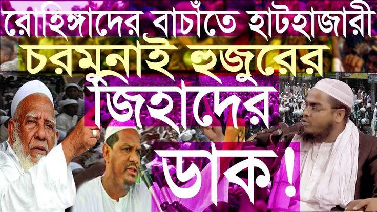 Hafizur Rahman Siddiki waz 2017। হাফিজুর রহমান সিদ্দিকী ওয়াজ ২০১৭। চরমুন...