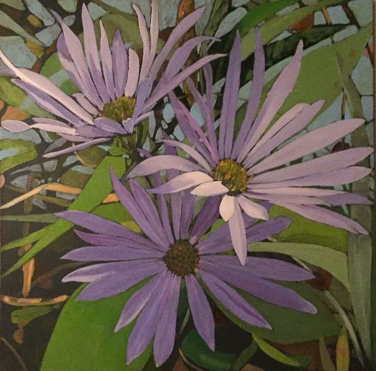 asters, Jeremy Vaughan
